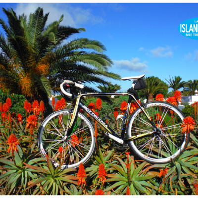 road bikerental Costa Teguise Lanzarote and tours