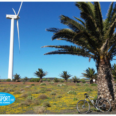 mountain bike excursion wind mills north Lanzarote